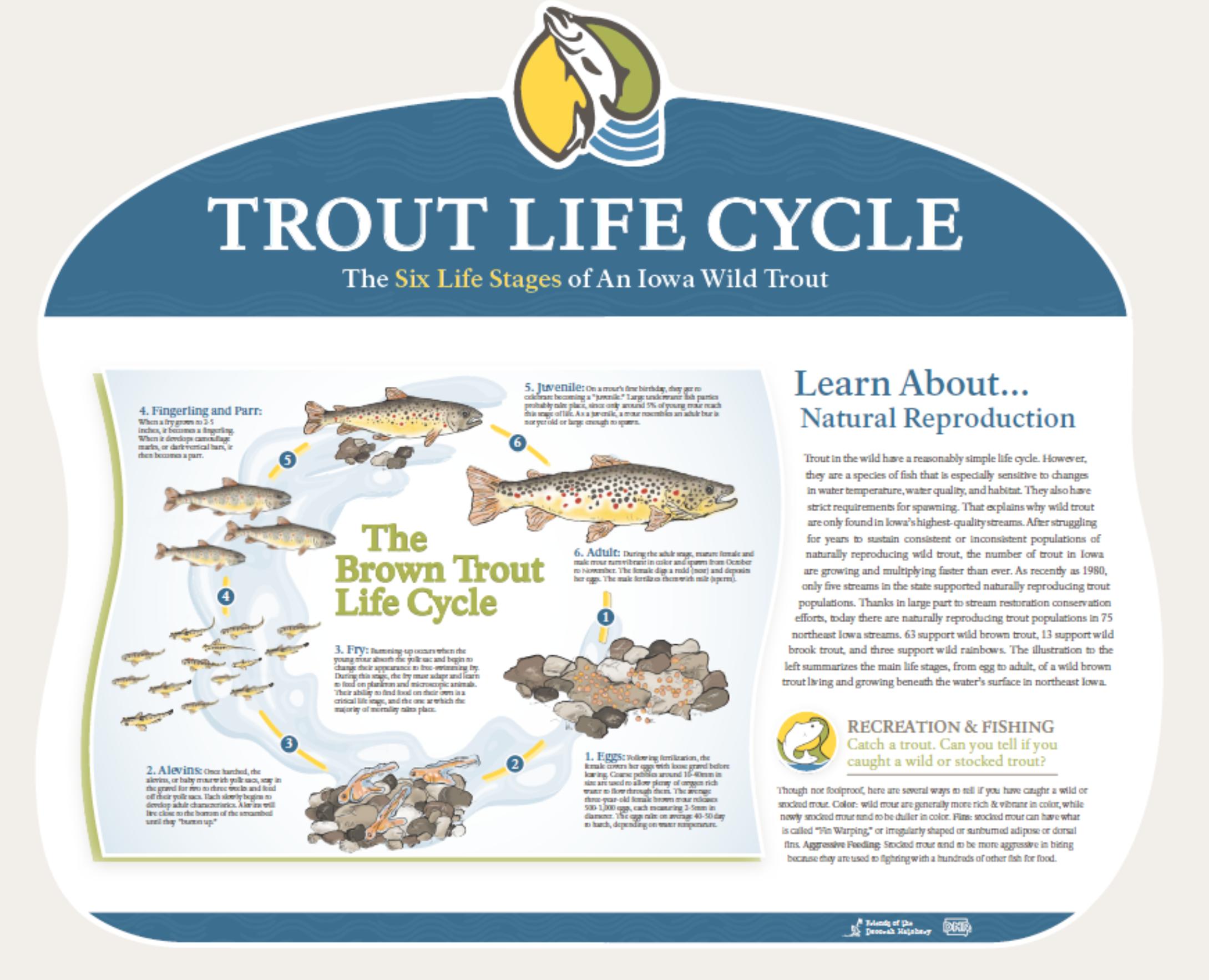signage-life-cycle